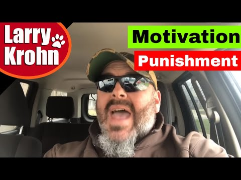 Motivation and Punishment in dog training