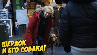 Шерлок Холмс и собака [русская озвучка]