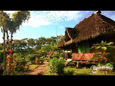 Kid's Explorer Educational Program in the Rainforest - Suchipakari Reserve & Eco Lodge