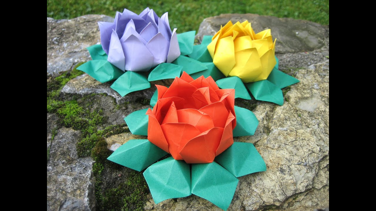 hight resolution of water lily origami diagram