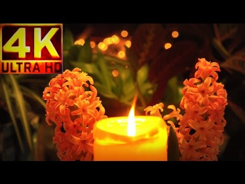 4K   LIVE Candle  burning & Dewdrop Fantasy [RELAX MEDITATION music]