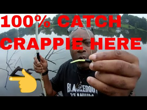 ***CRAPPIE FISHING ON BRUSHPILES AND STRUCTURE EFFECTIVELY WITH THIS STINGER***