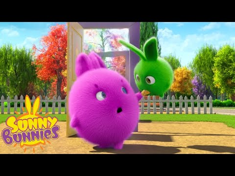 SUNNY BUNNIES - Learning To Share | Season 1 | Cartoons For Children