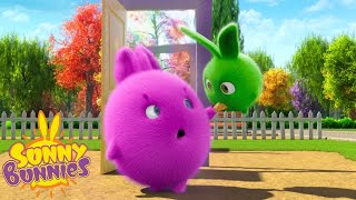 SUNNY BUNNIES - Learning to Share   Season 1   Cartoons for Children