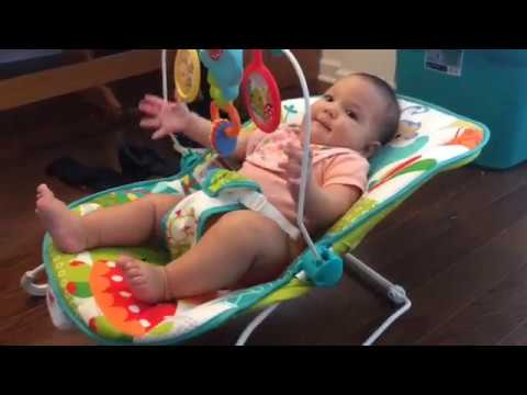 Fisher Price Animal Party Bouncer Review