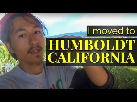 Why I moved to Humboldt California