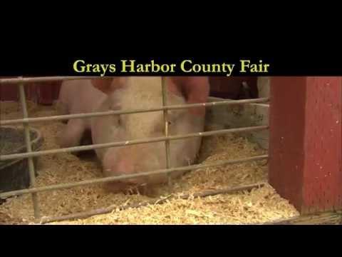 2014 Grays Harbor County Fair