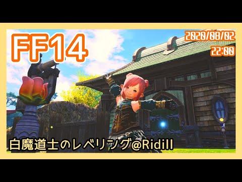【FF14】続・白ちゃんレベリング!!【Vtuber】