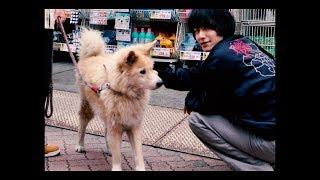 Koochewsen - soul (Official Music Video) 10/25レコ発@渋谷WWW