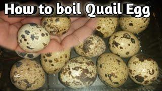 How to Boil Quąil Egg | Soft + Hard boil egg timings | Bakar Kitchen |