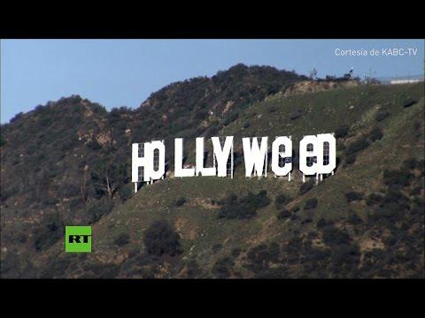 cambian el cartel de hollywood para celebrar la legalizacion de la marihuana en california