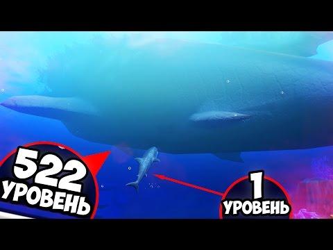 522 УРОВЕНЬ ДУНКЛЕОСТЕЯ! ОКЕАН СТАЛ ЛУЖЕЙ! МЕГАЛОДОН - МАЛЬКОМ! РЫБИЙ ЧЕЛЛЕНДЖ! FEED AND GROW FISH