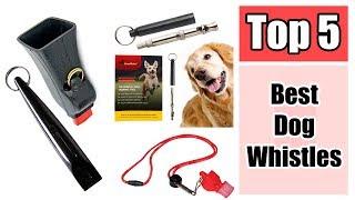 5 Best Dog Whistles to Curb Bad Dog Behavior Reviews 2017