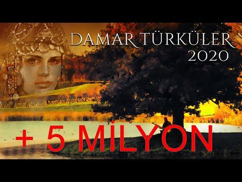 Damar   Türküler   2020  / Yepyeni  Karışık  Full   45   Eserden Oluşan  Halk Müziği Türküleri