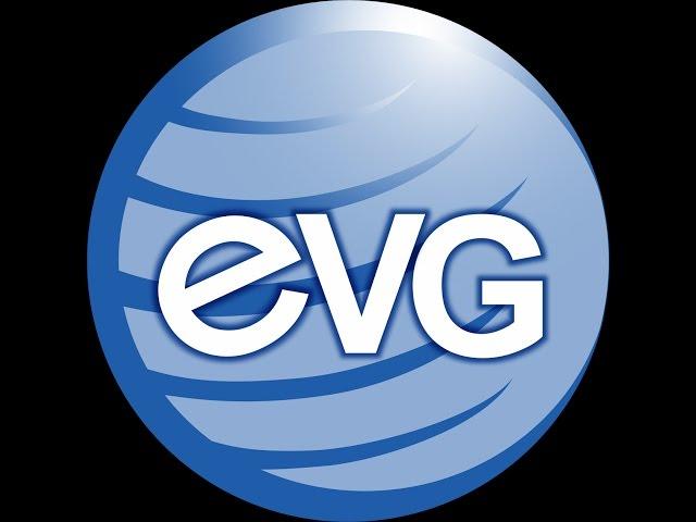 EVG??????