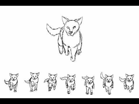 running wolf animation 2 - Wolf Picture Frames