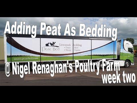 Nigel Renaghan Using Peat bedding for Poultry Week 2
