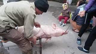 Chết cười với ông anh người yên thế thịt lợn ăn tết bá đạo!!!