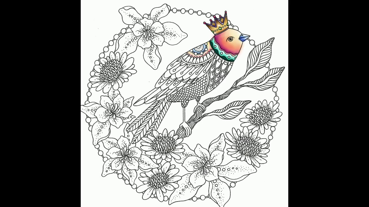 Adult Coloring On Procreate Bird Hannah Karlzon Adult Coloring Book Lisa Brando Speed Coloring