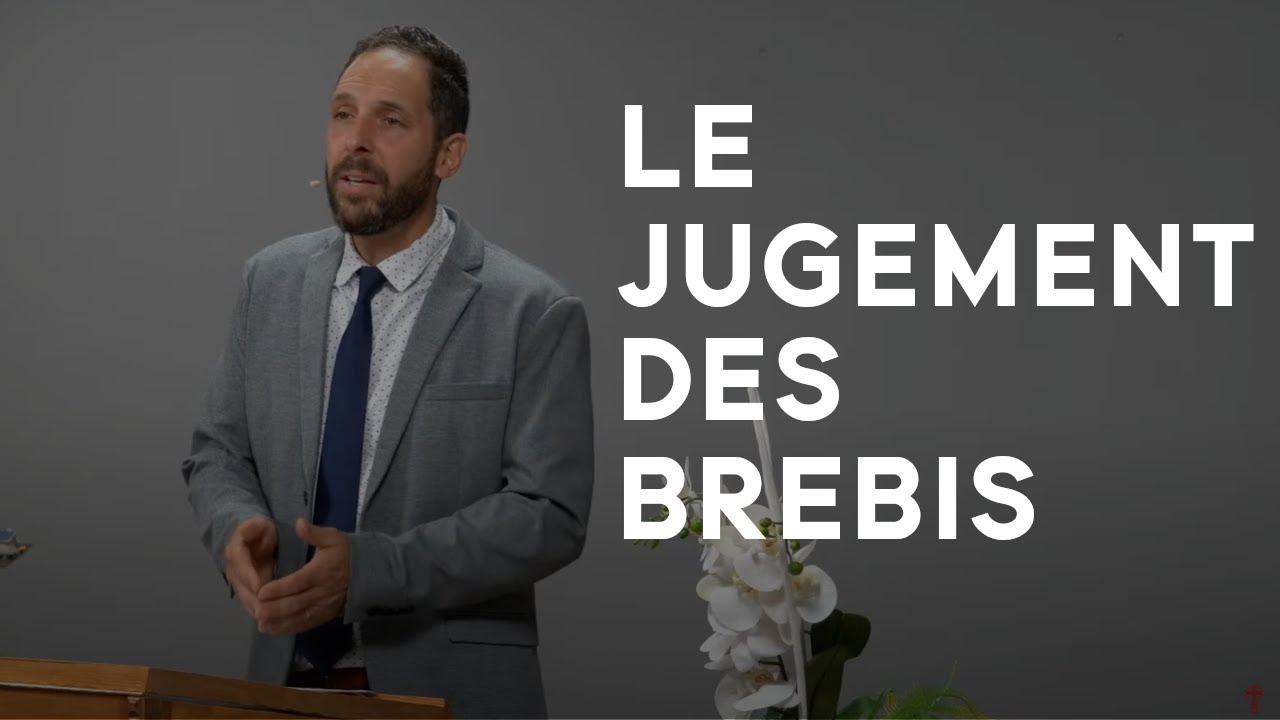 LE JUGEMENT DES BREBIS