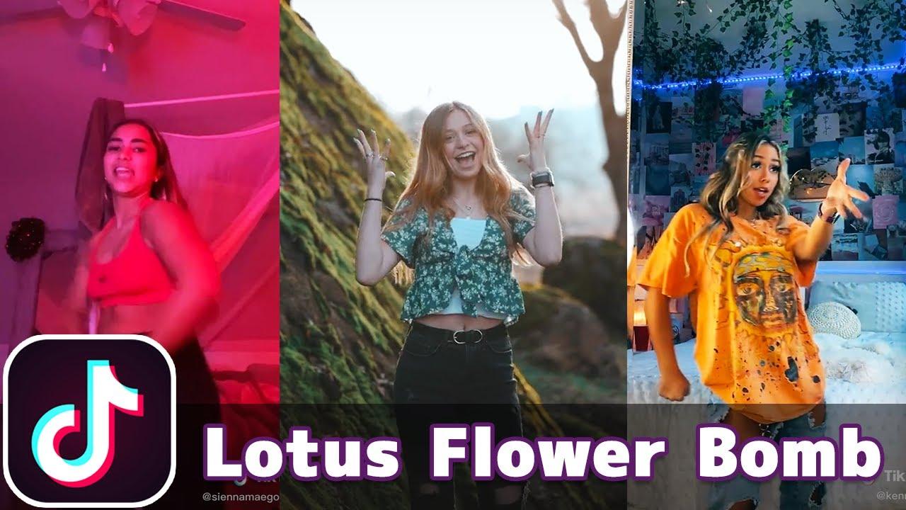 Ah, Ay, Eeh, Ahh Ohh Ooo (Lotus Flower Bomb - Wale) | TikTok Compilation