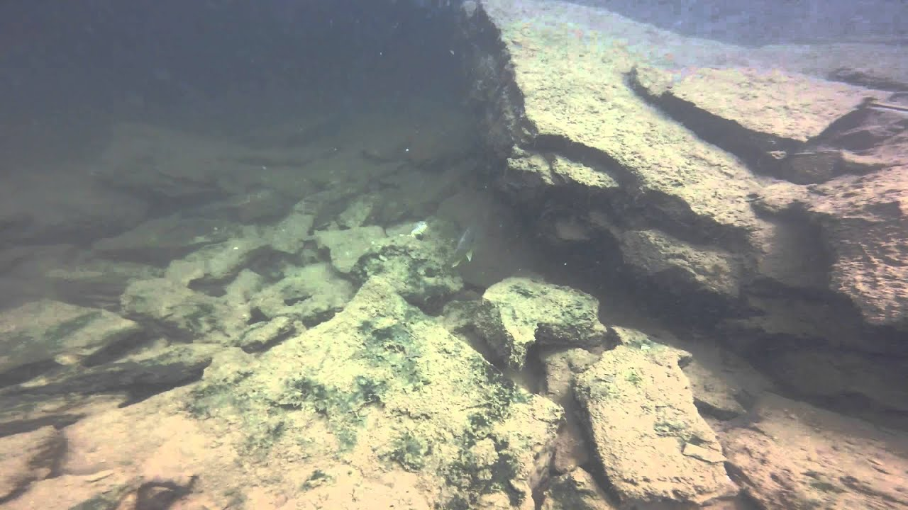 diving Greers Ferry - YouTube