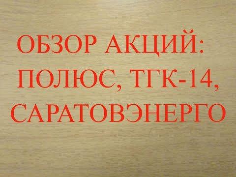 """Анализ финансовой отчётности  ПАО """"Полюс"""", ТГК-14 и Саратовэнерго за 2019 год."""