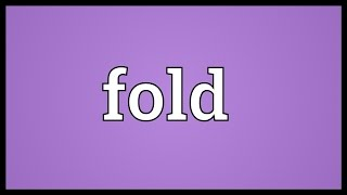 Fold Meaning