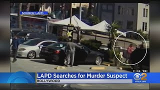 $50,000 Reward Offered In Hollywood Robbery, Murder At Taco Truck