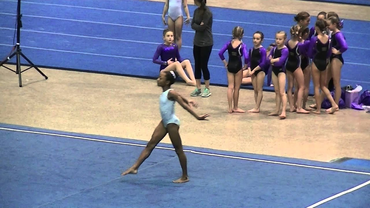 tampa gymnastics meet