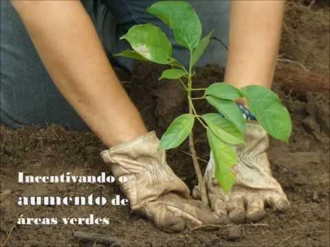 Projeto Ilhas Verdes - vídeo institucional
