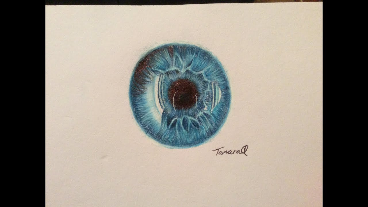 Gallery For gt Iris Of The Eye Drawing