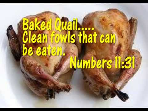 Is Chicken Clean Or Unclean Video