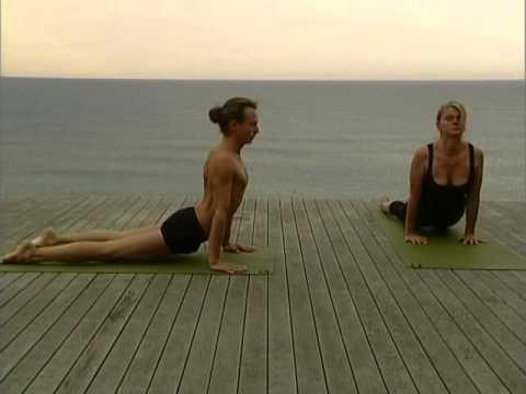 Ashtanga vinyasa yoga : 22 postures