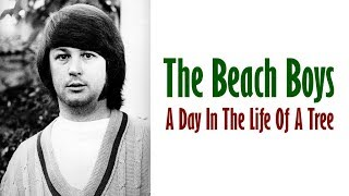 Watch Beach Boys A Day In The Life Of A Tree video