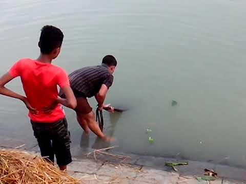 Life Story of A Fisherman | Life Style of fisherman | Fish Catching process