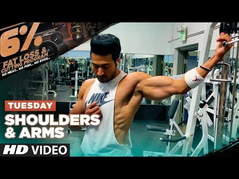 Tuesday - SHOULDERS & ARMS | 6% Vegetarian Fat Loss Program by Guru Mann