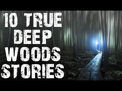 10 TRUE Dark & Chilling Horror Stories From The Deep Woods | (Scary Stories)