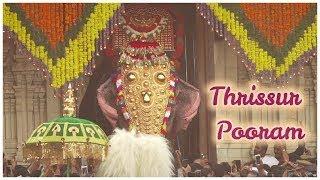 Thrissur Pooram 2019 - A Divine Extravaganza of Paramekkavu and Thiruvambadi