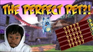 Wizard101: THE PERFECT PET?! (Baby to Mega Pet Training)