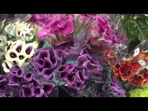 Boston flower exchange Chelsea Massachusetts