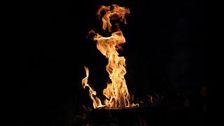 DIE ORSONS - Feuer & Öl (Live in WIEN)