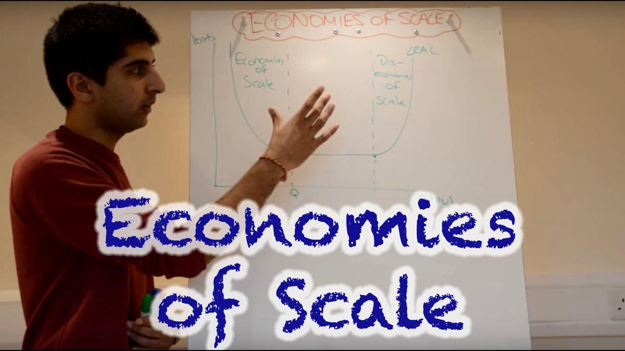 human diseconomies