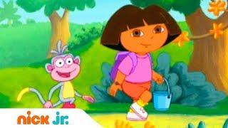 Даша-путешественница | Мы по ягоды идём | Nickelodeon