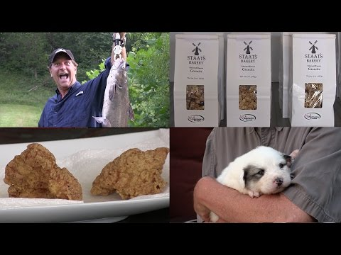 How-To Use Your Pond for Aquaculture, Fishing and Frying Catfish, Granola, Puppies!