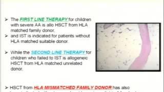 Aplastic Anemia Update: Seiji Kojima