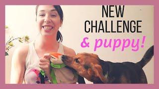 STRENGTH & POWER - Join The Challenge! (Meet Luna)