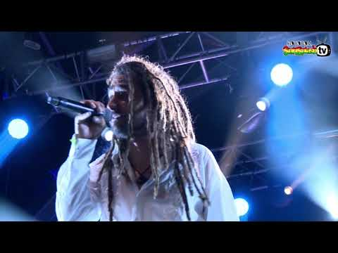 BABY I LOVE YOUR WAY By BIG MOUNTAIN Live @ Main Stage 2016