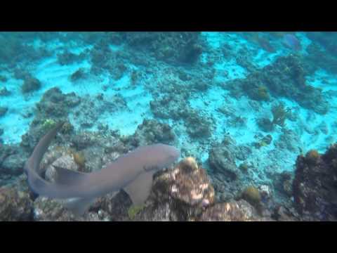 Sint Eustatius Anguilla