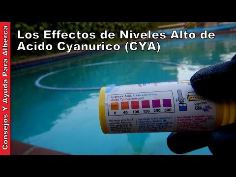 Los Effectos de Niveles Alto de Acido Cyanurico (CYA)